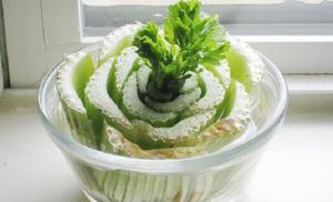 faire-repousser-celeri